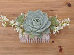 "Medium size succulent comb.The comb measures 3.25"" across and the succulent is approximately 1.75"" diameter."