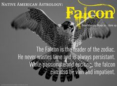 The Falcon is the leader of the zodiac. He never wastes time and is always persistent. While passionate and exciting, the falcon can also be vain and impatient. Native American Zodiac Signs, Native American Animals, Native American Wisdom, American Spirit, American History, Astrology Numerology, Astrology Zodiac, Animal Spirit Guides, Spirit Animal