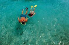 Great Stirrup Cay snorkeling Bahamas Cruise, Nassau Bahamas, Cruise Port, Roatan, Snorkeling, Great Photos, Kayaking, Things To Do, Beach