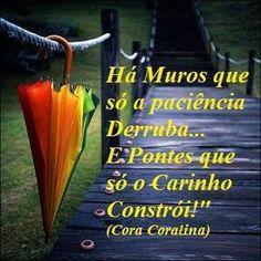 Por Dentro... em Rosa: Cora Coralina : uma lição . . .