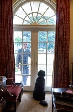 Dogs love you no matter what your station in life...even if you're the President.