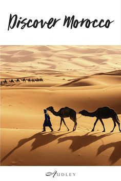 Tuareg with camels on the western part of The Sahara Desert in Morocco. The Sahara Desert is the world's largest hot desert. Morocco Tourism, Morocco Travel, Africa Travel, Marrakesh, Budapest, Desert Biome, Dry Desert, Desert Tour, Hotels