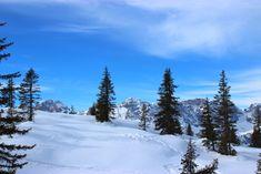 Comelico - verso monte Zovo