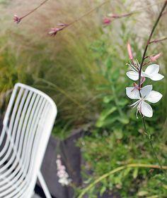 Miria Harris Garden Design London and Floristry Design London | Gardens
