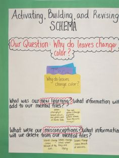 activating, building, and revising schema