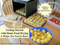 Getting Started With Home Food Drying...http://homestead-and-survival.com/getting-started-with-home-food-drying/