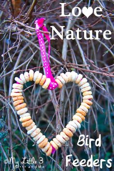 Easy homemade bird feeder. Enjoy your local wild birds and encourage a love of Nature with this heart shaped DIY bird feeder craft for kids.