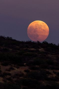 Once in an orange blue Moon   Amazing Pictures - Amazing Pictures, Images, Photography from Travels All Aronud the World