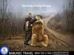 Babunec Travel Resim Galerisi