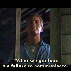 Paul Newman - Cool Hand Luke-Another Great Movie with great Performances! Old Movies, Great Movies, Paul Newman Quotes, Cool Hand Luke, Film Story, Favorite Movie Quotes, Old Movie Stars, Movie Lines, Funny Comments