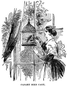 Free Vintage Image – Woman with Canary Bird Cage | Oh So Nifty Vintage Graphics