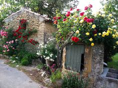 Climbing Roses in the Villages of Provence | LA DOLCE VITA: Living the Good Life in California's Mediterranean Climate