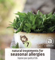 Do you suffer from sneezing, runny nose, nasal congestion, itchy ears and nose, or watery, itchy red eyes? There are natural alternatives for your seasonal allergies, from #probiotics to nettles. #allergies #allergyseason #naturalhealth