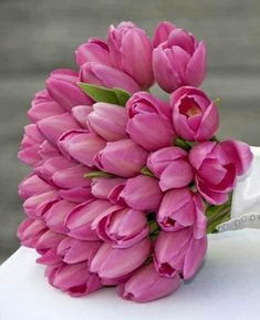 Save up to on Pink Tulip Wedding Bouquets! Buy Tulip Wedding Bouquets, Bridal Bouquets online and Wholesale Wedding Bouquets at BunchesDirect Tulip Bridal Bouquet, Tulip Wedding, Bridal Flowers, Wedding Bouquets, Dream Wedding, Wedding Dresses, Pink Tulips, Tulips Flowers, Pretty Flowers