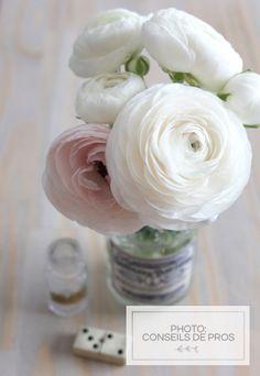 ideas for flowers roses bouquet ranunculus Cheap Wedding Flowers, Spring Wedding Flowers, Flower Bouquet Wedding, Flowers Roses Bouquet, Rose Bouquet, Flowers Vase, Amazing Flowers, Beautiful Flowers, Flowers Nature