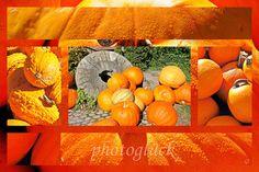Herbstliche Grüße - Grußkarte Kürbis - ein Designerstück von Gabriele-Jentsch bei DaWanda