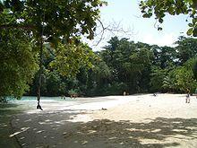 Frenchman's Cove by Port Antonio in Jamaica has been a popular, exclusive resort. Port Antonio Jamaica, Jamaica Travel, Amazing Race, Caribbean, Blog, Beach, Places, Water, Life