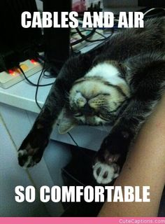 """""""Made This for a Friend of Mine. Her Cat Likes to Sleep on Her Computer Desk.""""  lol :3"""