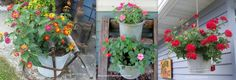 Organized Clutter: My Top Five Favorite Outdoor Planters