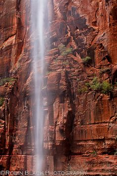 emerald pools, zion national park   nature photography #waterfalls