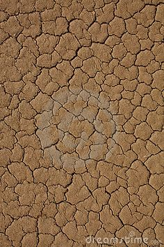 Cracked desert texture, like the playa.