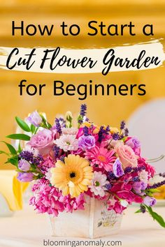 How to Grow an Amazing Cut Flower Garden - Blooming Anomaly Rose Like Flowers, Beautiful Bouquet Of Flowers, Types Of Flowers, Summer Flowers, Cut Flowers, Fresh Flowers, Cut Flower Garden, Flower Farm, Diy Flower