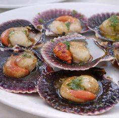 Vieiras, sea food. Galicia.