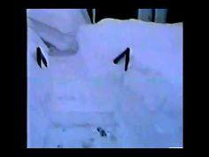 Loring AFB, Limestone, Maine (Typical Nightly Snowfall Jan 18, 1994) - YouTube