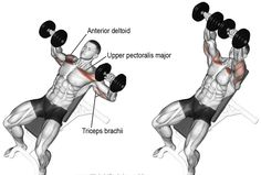 6 Chest Workouts - Best Chest Exercises for Beginners at the Gym