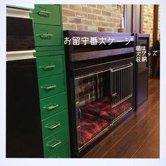 IZUMIさんの、IKEA,犬と暮らす,狭小住宅,犬ケージ,棚,のお部屋写真