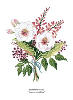 Summer Blooms by Charlotte Day, via Behance