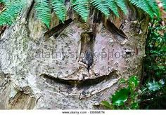 Image result for carved tree fern trunk Tree Fern, Tree Carving, Ferns, Image, Animals, Animales, Animaux, Wood Sculpture, Animal