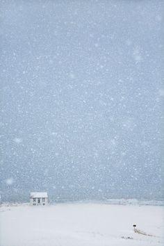 Snjór (snow)   Christophe Jacrot photography
