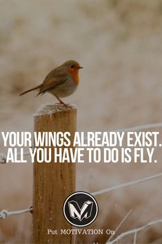 Fly, use your wings. Follow all our motivational and inspirational quotes. Follow the link to Get our Motivational and Inspirational Apparel and Home Décor. #quote #quotes #qotd #quoteoftheday #motivation #inspiredaily #inspiration #entrepreneurship #goals #dreams #hustle #grind #successquotes #businessquotes #lifestyle #success #fitness #businessman #businessWoman #Inspirational