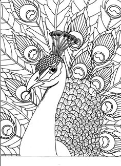 Coloring Pages] : adult coloring books kathryn&;s park avenue ...