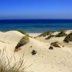 Playa de valdevaqueros. Tarifa , Cadiz