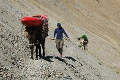 """Adam ensuring the donkeys went the right way"".   Rio Colca - Lunar Canyon (Perú)."