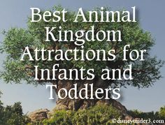 Disney Under 3 - Best Attractions at Disney's Animal Kingdom for Infants and Toddlers