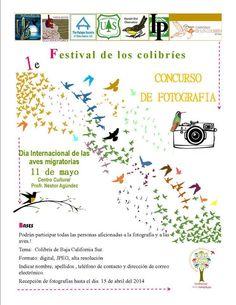 DIAM Día Internacional de las Aves Migratorias-México  #BirdDay