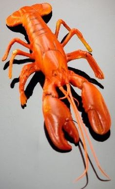 Fake Food Lobster Small Maine