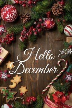 Image shared by Hippy. Find images and videos about christmas, december and hello on We Heart It - the app to get lost in what you love. Christmas 2016, Christmas Photos, Christmas Greetings, Christmas Time, Christmas Wreaths, Christmas Decorations, Holiday Decor, Seasons Of The Year, Months In A Year