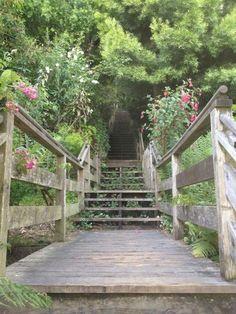 Filbert Steps on San Francisco's Telegraph Hill, a semi-hidden treasure.
