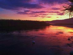 """See 323 photos from 6920 visitors about sunsets, fishing, and flowers. """"Everything is good in Struga 😊"""" Macedonia, Beautiful Landscapes, Travel Ideas, Sunsets, Celestial, Places, Photography, Outdoor, Outdoors"""