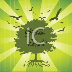 iCLIPART - Royalty Free Clipart Image of a Green Tree With Birds