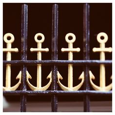 """Gated"" photo by Alicia Bock"