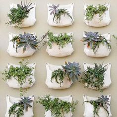 What a stunning unique idea for creating an urban garden! Love it! From Om - Urban Horticulture Heaven