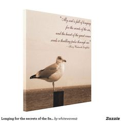 Longing for the secrets of the Sea Canvas .Canvas Print http://www.zazzle.com/whitewaves2 http://www.zazzle.com/longing_for_the_secrets_of_the_sea_canvas_canvas_print-192801703881515582