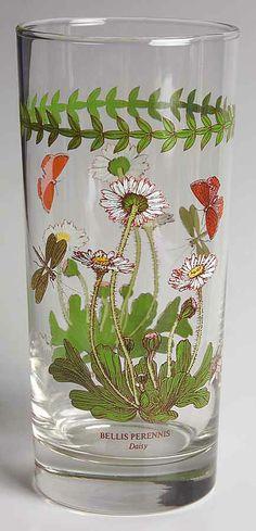 ... pattern botanic garden piece daisy 16 oz tumbler glass size