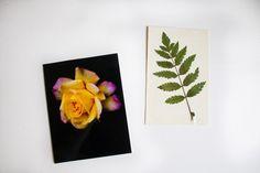 DIY simple postcards - reaktionista.se Postcards, Simple, Tableware, Diy, Inspiration, Biblical Inspiration, Dinnerware, Bricolage, Tablewares