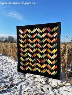 Washboard Road in Hoffman Batiks. Pattern by Highway 10 Designs Jellyroll Quilts, Im Excited, Pdf Patterns, Quilt Top, Taking Pictures, Quilt Making, Quilting Designs, Different Colors, Pattern Design